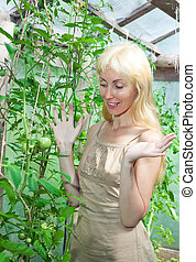 attractive woman in a hothouse rejoices to the future crop of tomatoes