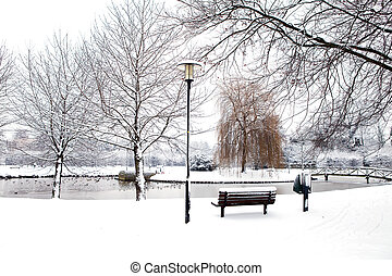 Dutch park in wintertime covered with snow