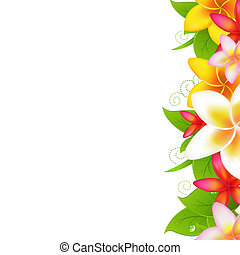 Garland From Plumeria - Tropical Flowers Frangipani,...