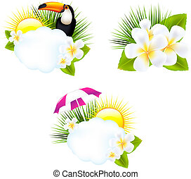 Tropical Illustrations, Isolated On White Background, Vector...