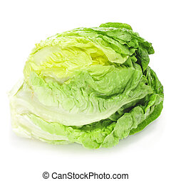 iceberg lettuce - an iceberg lettuce on a white background