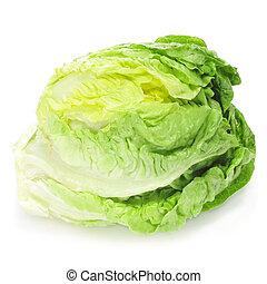 iceberg lettuce - an iceberg lettuce on a white background
