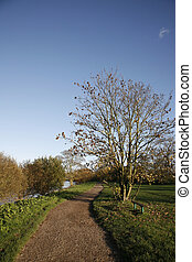 Public walk path along the River Thames - Public walk path,...