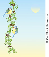 blue tits - an illustration of two blue tits parus caeruleus...