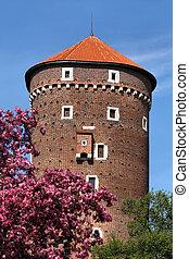 Wawel in spring