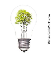 Bulb light with green tree inside isolated on white...