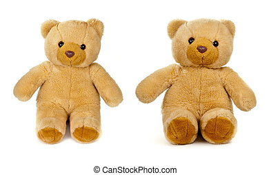 old teddy bear isolated on white