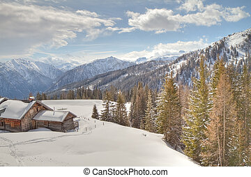 mountain cabin - wooden cabin in winter alps