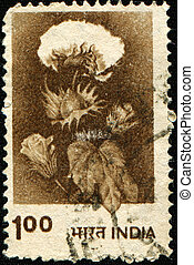 cotton - INDIA - CIRCA 1980: A stamp printed in India, shows...