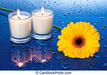 Wet, yellow flower by candle light with reflection on blue...
