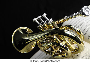 trompette, musique, feuille