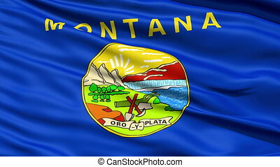 Waving Flag Of The US State of Montana with the official...