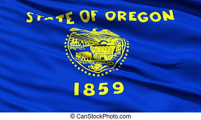 Waving Flag Of The State Of Oregon