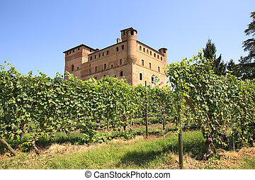 Vineyards and castle of Grinzane Cavour. - Old castle of...