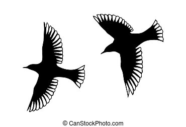 Angel Bird Silhouettes - Detailed bird silhouettes. Looks...