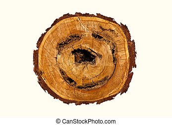 Smile-shaped log of wood