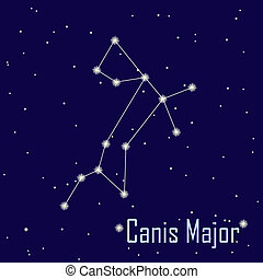 """The constellation """" Canis Major"""" star in the night sky...."""