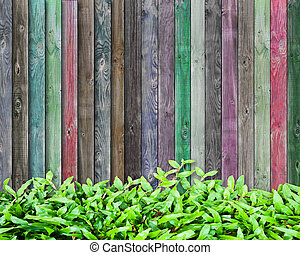 fresh grass and multicolor wood background