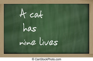 """""""  A cat has nine lives """" written on a blackboard"""