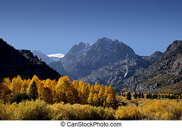 Mountains and Aspens - Mountains and aspens, June Lake Loop,...