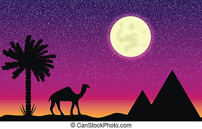 Night in Egypt