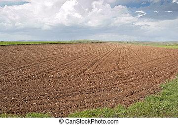 Ploughed field in Ciudad Real (Spain)