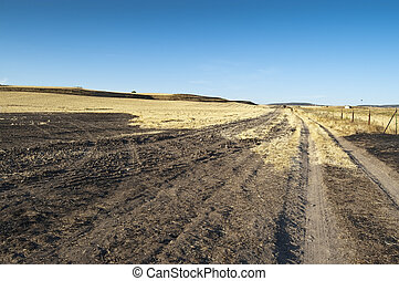 Field of burnt stubble in an arable landscape in Ciudad...