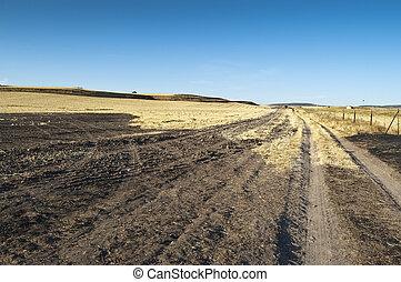 Field of burnt stubble in an arable landscape in Ciudad...