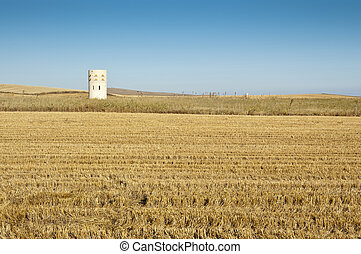 Dovecote - Dove cote in an agrarian landscape in Ciudad Real...