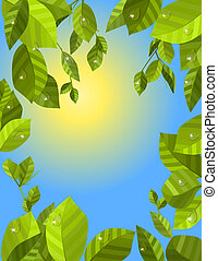 Frame with fresh green leaves and sun