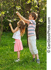 Little boy and girl tear the tree flowers inside green forest at summer day