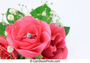 diamond ring and rose - I put a diamond ring in a pink rose...