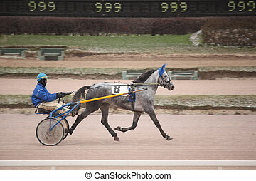 horse trot racing on Moscow hippodrome Dece - MOSCOW -...
