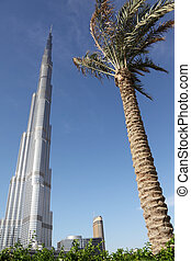 DUBAI - APRIL 17: Burj Dubai skyscraper, palm and plants in...