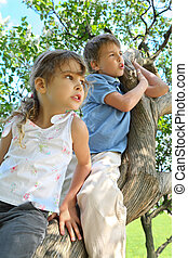 Girl and boy sit on caudex of lilac and look aside, focus on  girl