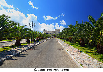 Palm trees planted in row along mall leading to ancient...