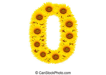 Number 0,  Sunflower isolate on White background