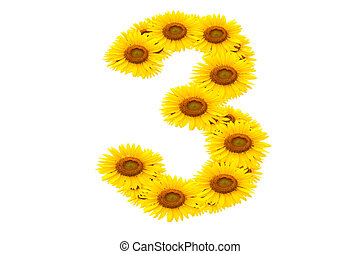 Number 3,  Sunflower isolate on White background
