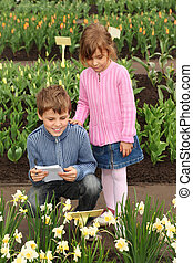 little boy and girl in looking at narcissus at greenhouse, boy writing information about flowers from plate