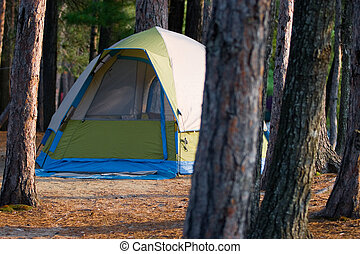 Tent Camping in the Woods at a Wilderness Campsite