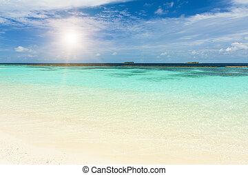 Sea and Maldives - Beautiful crystal clear Maldivian sea and...