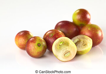 Camu camu berry fruits lat Myrciaria dubia which are grown...