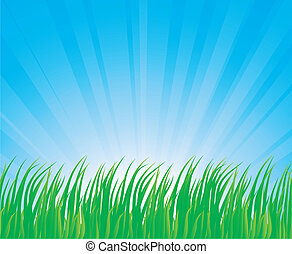Lush grass. - Fresh green grass. Vector illustration.