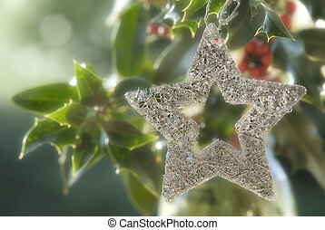 Christmas background, silver star in a holly - Christmas...