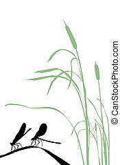 silhouette two dragonflies on herb