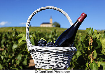 red wine - bottle of red wine and grappes in basket in...