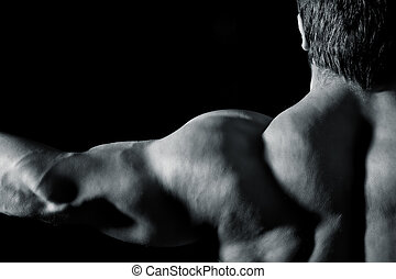 bodybuilding man - An image of a muscular sports man back