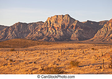 Warm Dawn Desert Light