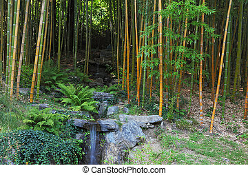 The falls in a bamboo grove - Traditional Japanese park on...