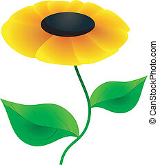 Vector image abstract yellow flower